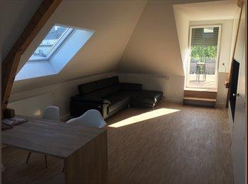 Chambre meublée à Luxembourg-Limpertsberg