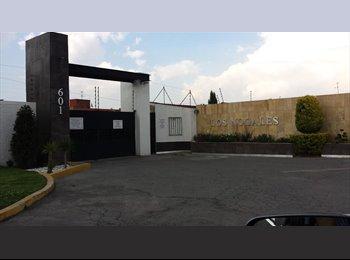 CompartoDepa MX - Busco roomie para compartir casa - Toluca, México - MX$4,000 por mes