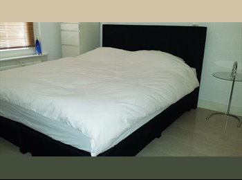 EasyKamer NL - Private room (short term only) | € 25 per day - Oude Pijp, Amsterdam - € 400 p.m.