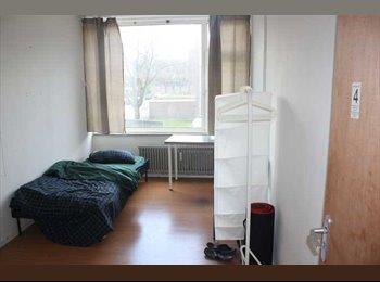 EasyKamer NL - Gemeubileerde kamers centrum Deventer va €300, - Deventer, Deventer - € 300 p.m.