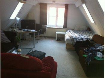 EasyKamer NL - zeer ruime kamer midden in centrum Groningen - Binnenstad, Groningen - € 448 p.m.