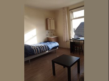 EasyKamer NL - Nice, furnished room for single person, Delft - Delft, Delft - € 495 p.m.