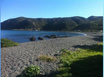 NZ - Seaside living - Camborne, Wellington - $120 pw
