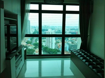 EasyRoommate SG - 2 Bedrm Condo at CitySquare Residences for Rental. - Little India, Singapore - $4,500 pcm