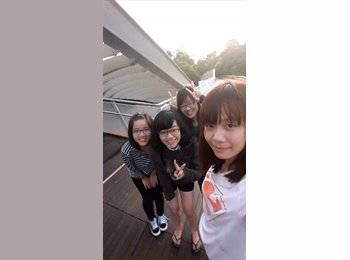 EasyRoommate SG - Haley   - 20 - Singapore