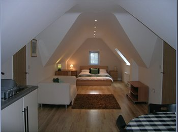 EasyRoommate UK - Beautiful Large Loft rooms to rent in Gt Leighs - Great Leighs, Chelmsford - £700 pcm