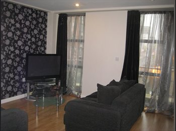 Room in lovely city centre flat, available NOW