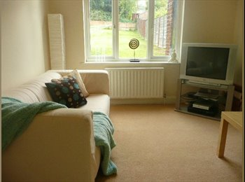EasyRoommate UK - Chilled, professional household in Luton - Luton, Luton - £370 pcm