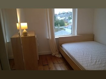 EasyRoommate UK - PONTCANNA - Lovely large double available Dec 22nd - Canton, Cardiff - £320 pcm