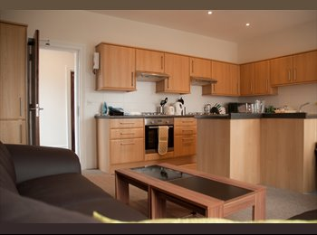 EasyRoommate UK - Ensuite room available in fab & friendly house! - Boscombe, Bournemouth - £550 pcm