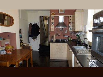 EasyRoommate UK - Large Room to rent - Doncaster, Doncaster - £300 pcm
