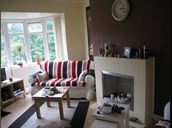 EasyRoommate UK - Housemate wanted Jesmond - Jesmond, Newcastle upon Tyne - £325 pcm