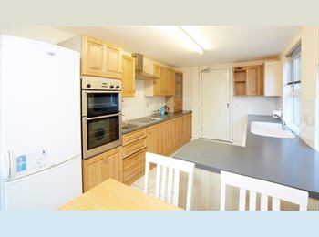 EasyRoommate UK - Really Well Proportioned House - Kingston-upon-Hull, Hull - £240 pcm
