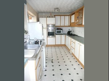 Double Furnished Room,  Shared House Basingstoke