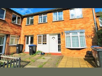 EasyRoommate UK - STUDENT HOUSE IN HATFIELD CLOSE TO UNI - Hatfield, Hatfield - £350 pcm