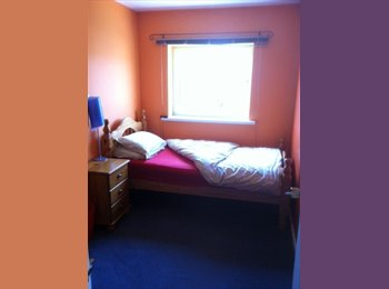 Single & Double Room for Professional Females