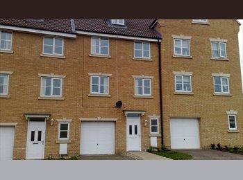 EasyRoommate UK - Quality Professional Houseshare Hampton Peterbor - Hampton, Peterborough - £400 pcm