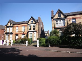 EasyRoommate UK - 1 Room available in a 2 bedroomed flat. - Tuebrook, Liverpool - £260 pcm