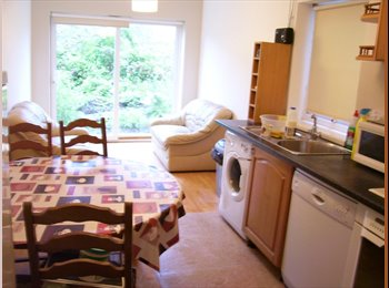 EasyRoommate UK - Don't miss this one. - Cathays, Cardiff - £320 pcm