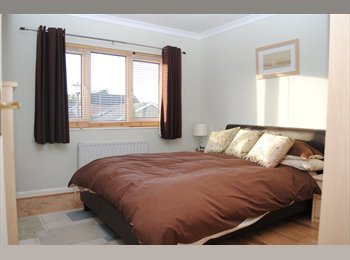 Beautiful rooms to rent close to town centre