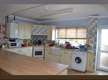 EasyRoommate UK - Student house 2 rooms left - Swansea, Swansea - £258 pcm