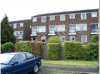 EasyRoommate UK - 4 Bed Student House located close to University - Hatfield, Hatfield - £400 pcm