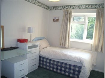 EasyRoommate UK - CLEAN & COMFORTABLE room available. - Tunbridge Wells, Tunbridge Wells - £395 pcm