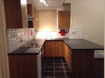 NICE Large 1 Bed Room Flat
