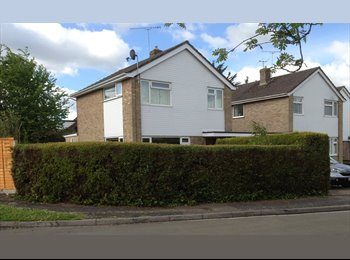 EasyRoommate UK - Best place to stay on Ringwood!! - Ringwood, New Forest - £520 pcm