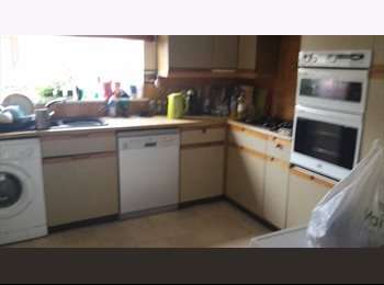 EasyRoommate UK - cheap double room in winton! sept 2015 - Winton, Bournemouth - £282 pcm