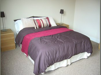 EasyRoommate UK - Super Deluxe Professional House Share. - Armley, Leeds - £300 pcm