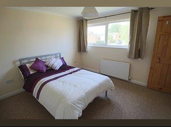 EasyRoommate UK - L-U-V-E-R-L-Y Double Room in Newly Furbished House - Pingreen, Stevenage - £470 pcm