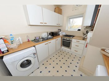 3 BEDROOM STUDENT PROPERTY FOR 2015!