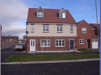 EasyRoommate UK - 3 storey new town house - Blackwell, Darlington - £400 pcm