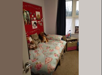 1 large singe ensuite room (All bills included)