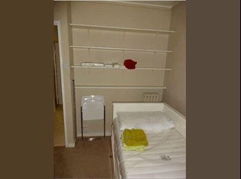 Single Room - Central London- PIMLICO in a Duplex
