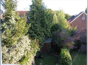 EasyRoommate UK - Always goes on first viewing - St. Albans, St Albans - £500 pcm