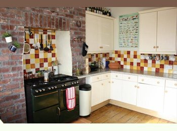 EasyRoommate UK - 1 Double Bedroom in Shared House to Rent - Mutley, Plymouth - £500 pcm