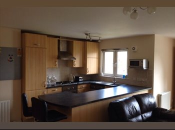 EasyRoommate UK - Room Available! - Aberdeen City, Aberdeen - £500 pcm