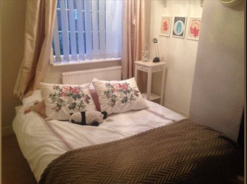EasyRoommate UK - 1 Bedroom to Rent in 2 Bedroom House in Town - Colchester, Colchester - £400 pcm
