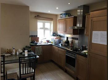 1 Large single room in Kingston upon Thames