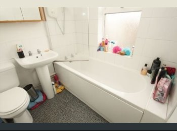 HOUSEMATE WANTED! 15 MINUTES WALK FROM BU