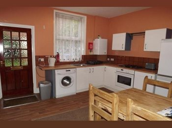 EasyRoommate UK - Lovely 4-bed house available now in Greystones - Greystones, Sheffield - £260 pcm