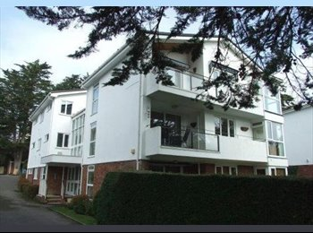 EasyRoommate UK - Great Flat share right by the beach - Sandbanks, Poole - £550 pcm