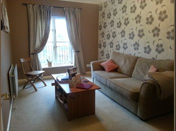 One room available in two bedroom flat