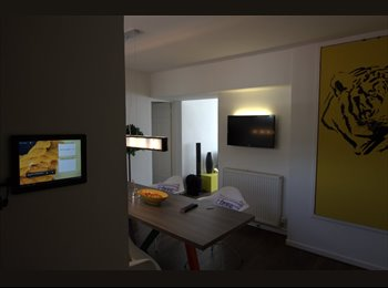 EasyRoommate UK - Large Single and Double Rooms available from May! - Great Baddow, Chelmsford - £350 pcm