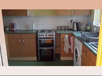 EasyRoommate UK - Large Double Room - Abingdon, Oxford - £450 pcm