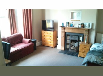 EasyRoommate UK - Furnished, spacious double room on Mutley Plain - Mutley, Plymouth - £340 pcm