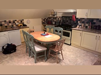 Room available in Marlborough in spacious house