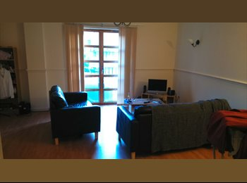 EasyRoommate UK - Roommate wante for large city flat - Dundee, Dundee - £310 pcm